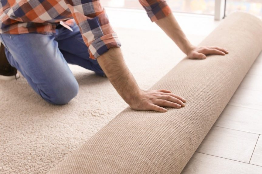 bedbugs in carpet changing