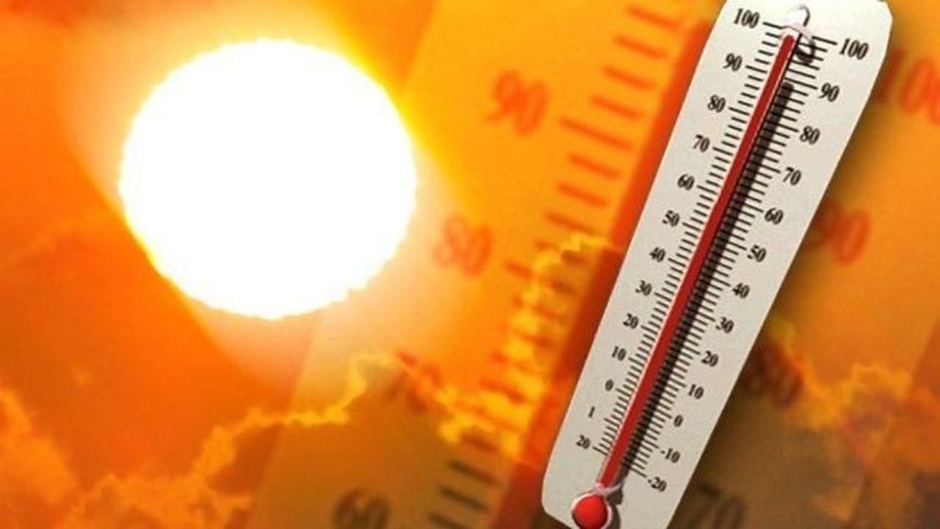 heat temperature kill bed bugs
